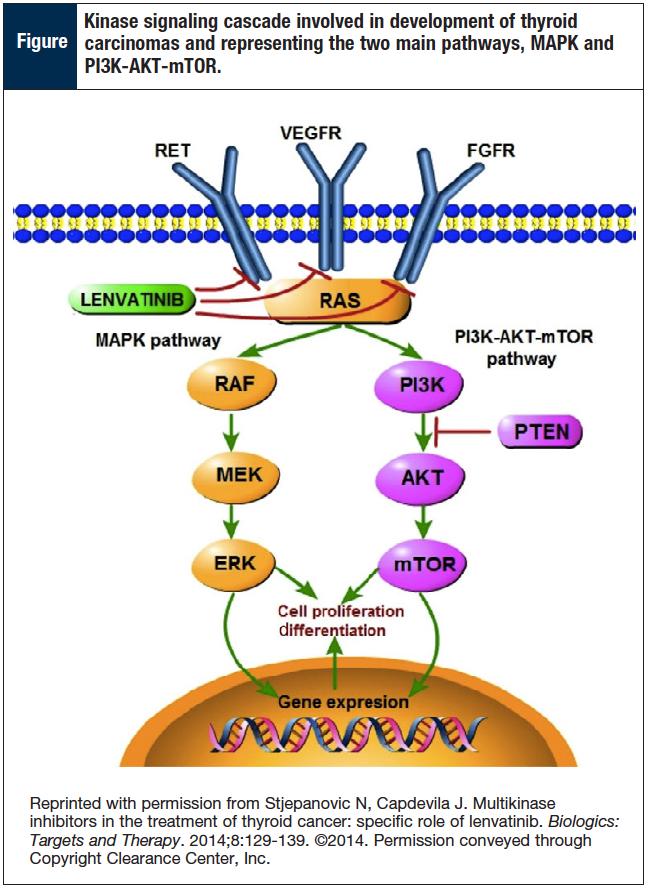 lenvatinib a receptor tyrosine kinase inhibitor