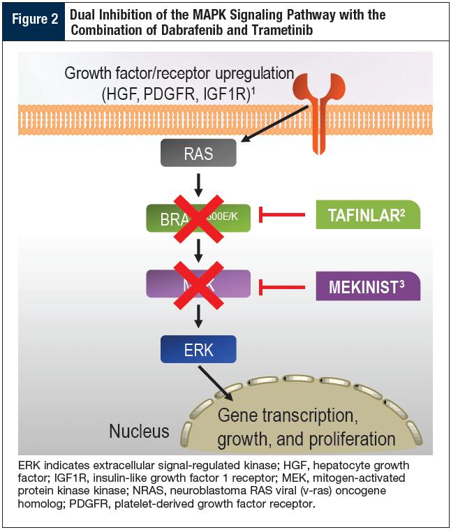 Dabrafenib plus Trametinib: Two Kinase Inhibitors Used in ... Dabrafenib